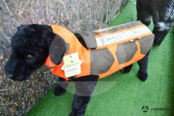 Gilet giubbotto protettivo per cani Ligne Verney-Carron Rhino Dog LVAC125-80 lato